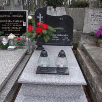 GLOB-KAM-groby-pojedyncze05
