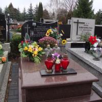 GLOB-KAM-groby-pojedyncze15